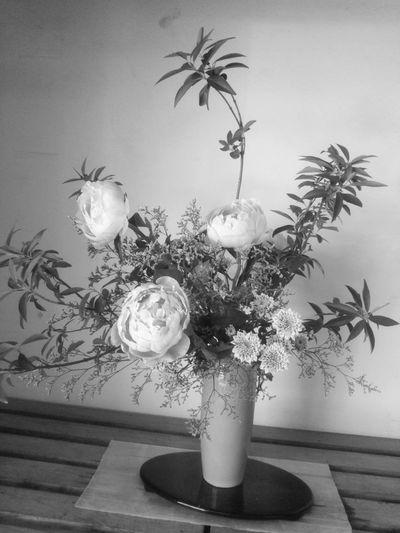 生け花 生け花 Flower