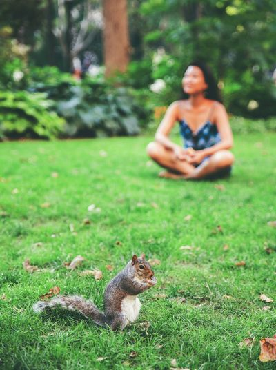Woman sitting on grassy field with squirrel in foreground