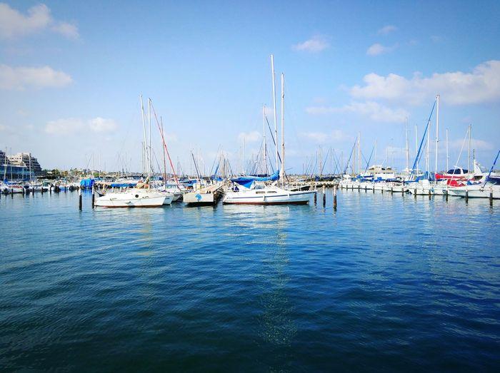 Marina Sea Boats