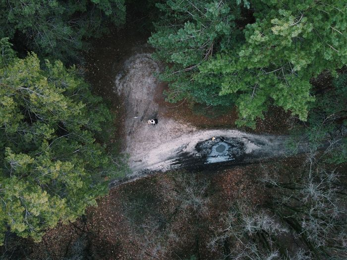 High angle view of dirt road amidst trees in forest