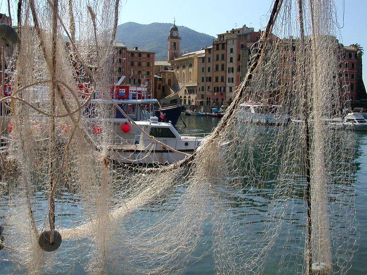 le reti di Camogli, Toscana Architecture Camogli Italia Nature No People Rete Da Pesca River Toscana Water
