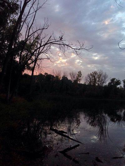 Friday sunset Sunset
