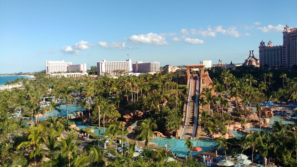 Travel Travel Destinations Outdoors Landscape Palm Trees Caribbean Holidays Bahamas Paradise Island Waterpark Tourism Luxury Fun Nassau Destination Honeymoon Family Time Atlantis Hotel Vacations Beach Caribbean Life Travel Children Slide