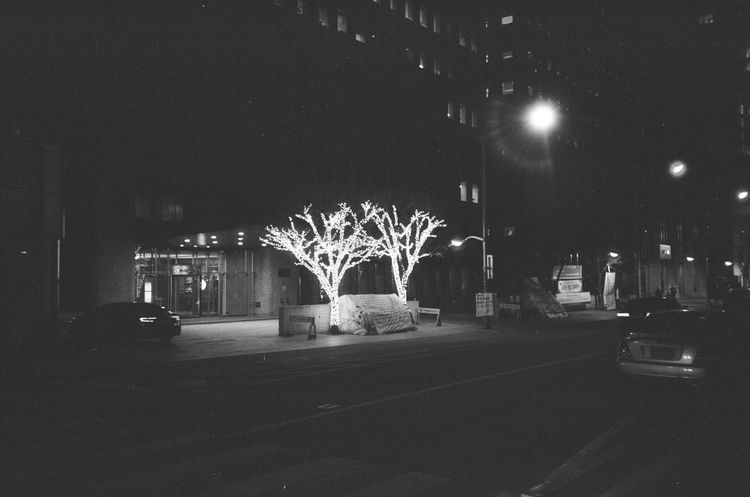 Long-term protesters' camp between Christmas decorations. Gwanghwamun, Seoul. Winter, 2015. Olympus Mju:, Ilford HP5 Plus 400. 2015  Gwanghwamun Ilford HP5 Plus 400 Mju Olympus Mju Protest Seoul Winter Ilford HP5 Plus
