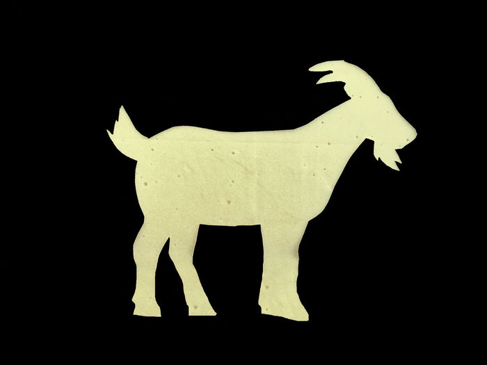 Goat/Cheese CAPRA Formaggio Goat Animal Animal Representation Art And Craft Black Background Cheese Cibo Cut Out Food Foodphotography Iphonephotography Mobilephotography Sagoma Silouette Silouette Photography