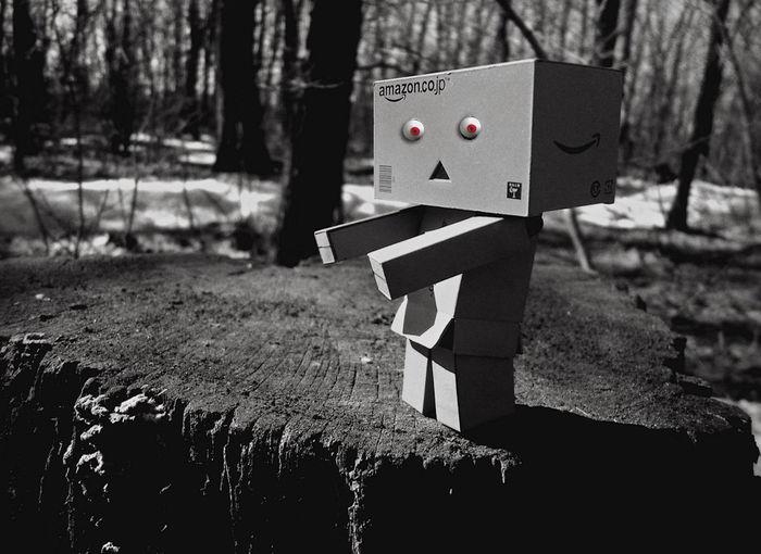 Danboard Кевин если вы забрели далеко в чащу леса , то можете там обнаружить ,совсем не страшного , зомби по имени Кевин.) #danboard #Dark #kevin #White #black  #black And White #box #darkness #forest #red Eyes #robot #setting #the Dense Forest #the Idea #thicket #zombies #лес #тёмный #чёрнобелое Nature No People Tree