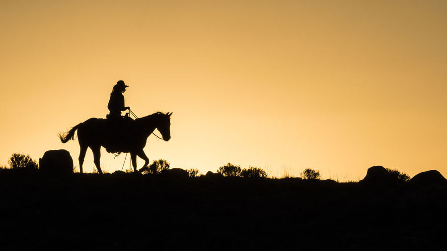 Silhouette Cowboy Riding Horse On Field Against Sky