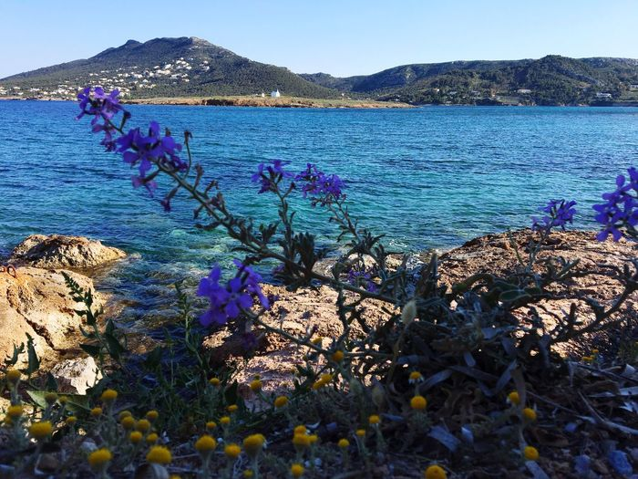 Nature No People Outdoors Beauty In Nature Water Sea Loutsa Beach Greece Artemis Nofilter