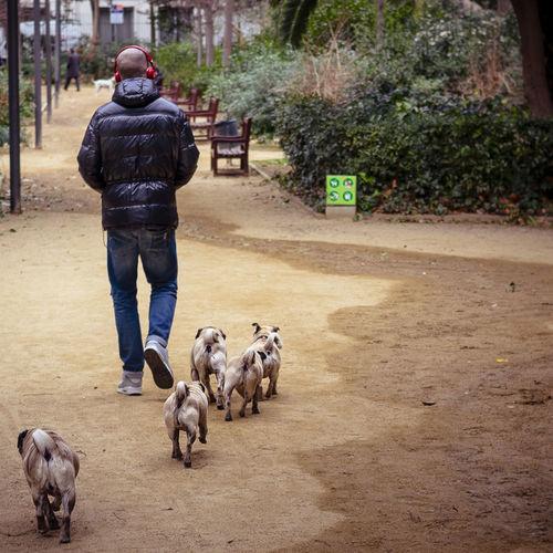 'We're family'. Dog Love Park Eye4photography  Enjoying Life