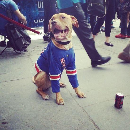 Go Rangers!!! Nyrangers Finals Rangers Bryantpark ny
