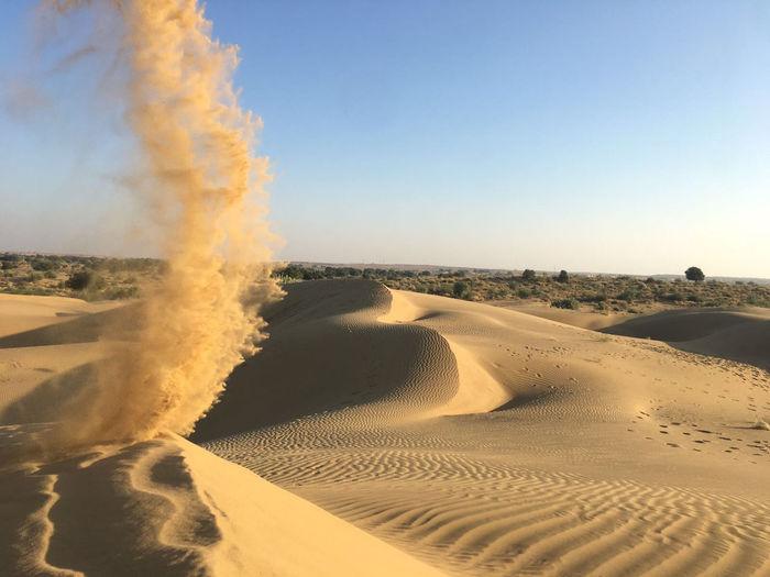 Desert India Sheepherd Travel Arid Climate Camel Day Desert Jaisalmer Landscape Nature Obrigado Outdoors Rajasthan Sand Sand Dune Sheep Sunset Thar Desert