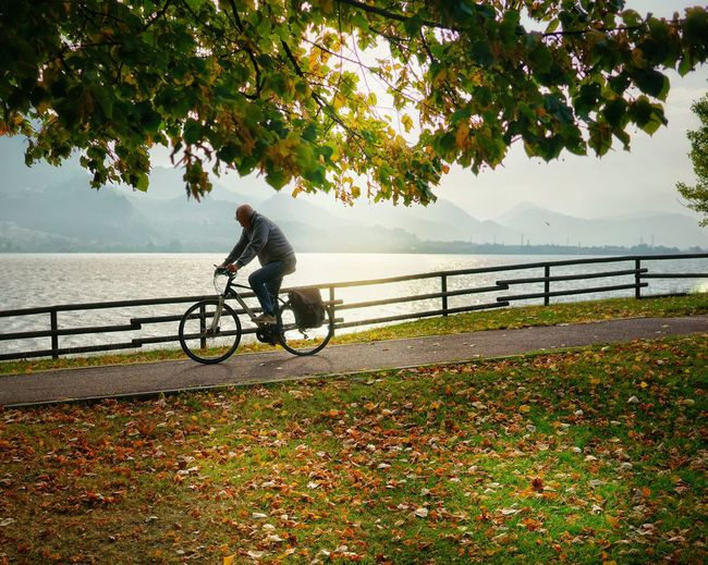 Parco Torrette Autunno  Autunno🍁 Bicicletta Firstlights Sony Travel Raggidisole Sunshine Sunlight Bike Tree Water Full Length Headwear Cycling Helmet Bicycle Cycling River Sky Bmx Cycling Mountain Bike Skateboard Park Pedal Biker Riding Bicycle Lane Tranquility Tranquil Scene Autumn Mood