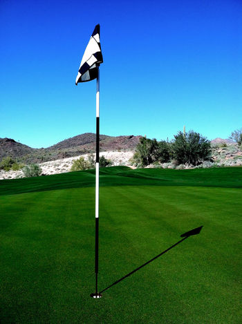 Arizona Blue Challenge Clear Sky Competition Design Flag Flag Pole Golf Golf Course Golfing Grass Green Hole Leisure Activity Phoenix Putting Green Recreational Pursuit Sports