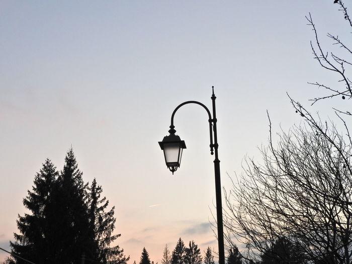 Cold Temperature Enjoying Life Street Lamp Sunset Trees Walking Around No Filter