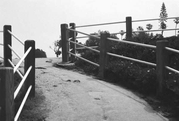 Ilford HP5 Plus Clear Sky Minolta50mmf14 Minoltaxd7 Nature No People Railing Steps
