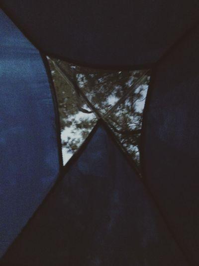 20temmuz2016 Morning Tree Hi Hisky Hellotree Camp Camping Littlewindow Blueandgreen Sabah Agac Merhaba Gokyuzu Woke Up Andsee Deniz Kamp Erikli çadır Maviveyeşil Erken Early Morning ❤