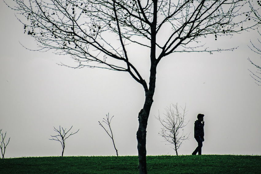 Tree Landscape Silhouette Fog Nature Beauty In Nature Day Branch Grass Outdoors People Streetdreamsmag Outdoors Life Istanbulstreetphotography Check This Out Street Life Istanbul City Streetphotography The Street Photographer - 2017 EyeEm Awards