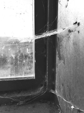 Glass - Material Transparent Window No People Denmark