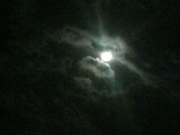 Moonlightscape