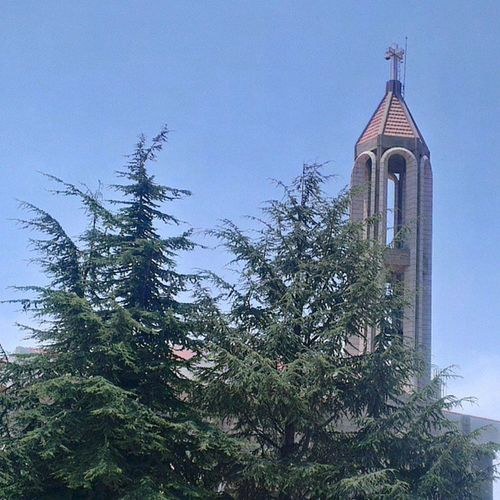 Marcharbel  Saintcharbel Saintsoflebanon Jbeil annaya lebanon peace peaceofmind pray cross bells nature cedar green tree