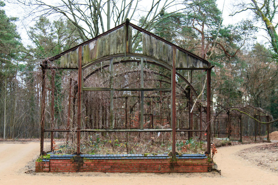 Decay Glasshouse Greenhouse Heilstatten Lost Places Rotten Places Structure Wood
