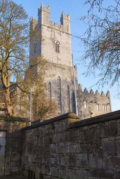 St. Mary's Cathedral in Limerick, Ireland Architecture Building Exterior Built Structure Day History Low Angle View No People Outdoors Place Of Worship Religion Sky Spirituality Tree