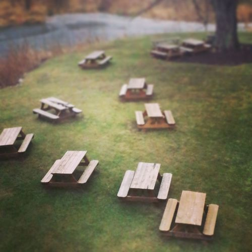 10 picnic tables and a trees Picnic Picnic Area Picnic Table Scenic Picnic Tables Color No People Taking Photos Taking Pictures Full Frame Editorial  Nature Colorful Background Backgrounds Pond Editorial Photography Lines, Shapes And Curves Lines And Shapes Nature_collection Brown Naturelovers