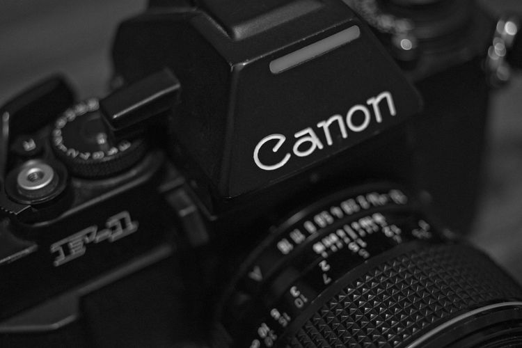 Canon New F-1 Film Camera Blackandwhite Camera - Photographic Equipment Canon 70d CanonNewF1 Film Is Not Dead Film Photography Filmisnotdead Macro