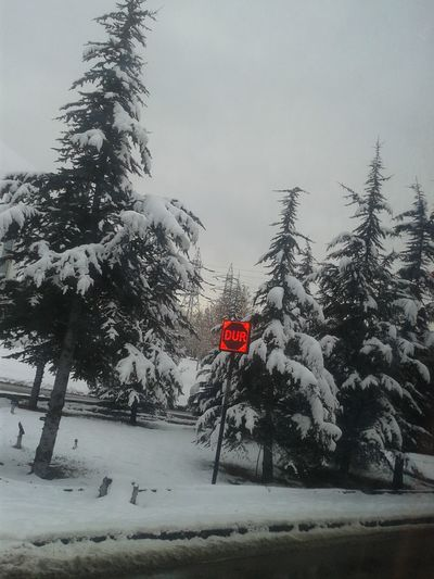 Stop! Beauty In Nature Tranquility Taking Photos Winter_collection Tree No People Red Cold Temperature Snow Winter Communication Outdoors Sky Forbidden Nature Day Flag Water Stop