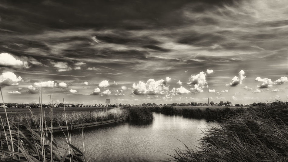 Alone In Elements Beauty In Nature Black And White Cloud - Sky Day Growth Landscape Nature No People Outdoors Scenics Sky Tranquil Scene Tranquility Water