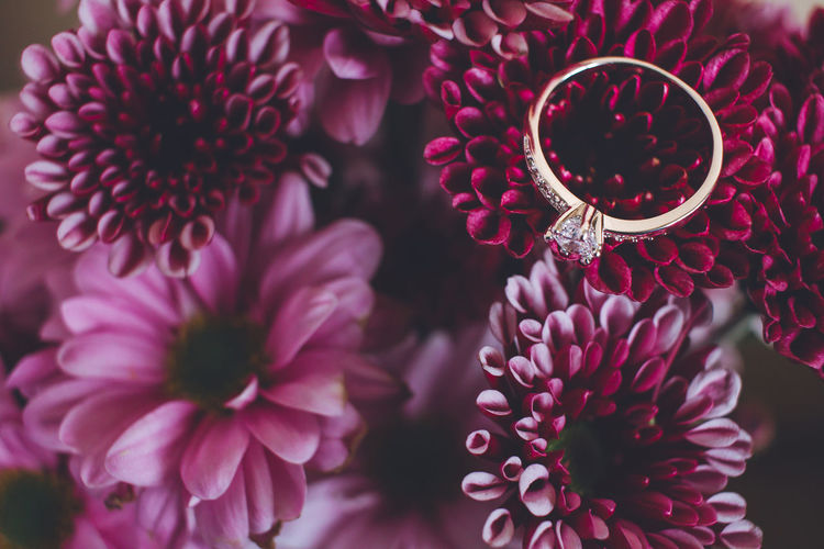 One engagement ring Flower Flowering Plant Petal Plant Close-up Inflorescence Fragility Beauty In Nature Flower Head Vulnerability  Freshness Growth Pink Color No People Focus On Foreground Pollen Nature Day High Angle View Selective Focus Bouquet Flower Arrangement Ring Wedding Engagement