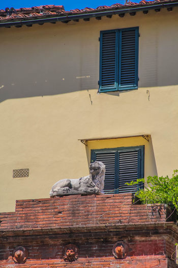 Lucca Lucca Italy Toscana Architecture Building Exterior Day Lion Sculpture Lion Sculptures No People Outside Sculpture Window