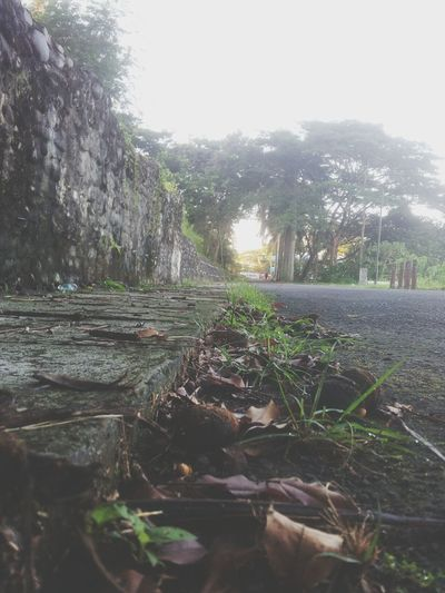 Is very important for health care . Jogging Track Hello World GoodMorningWorld Vscocam