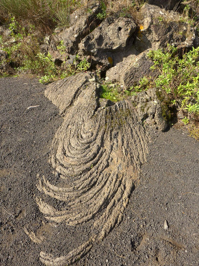 Eine Wanderung auf den Vesuv vorbei an Stricklava Geological Formation Geology Italy Lapilli Lava Napoli Physical Geography Pähoehoe Lava Rope Rope Lava Stricklava Vesuvio Volcano Vulkan