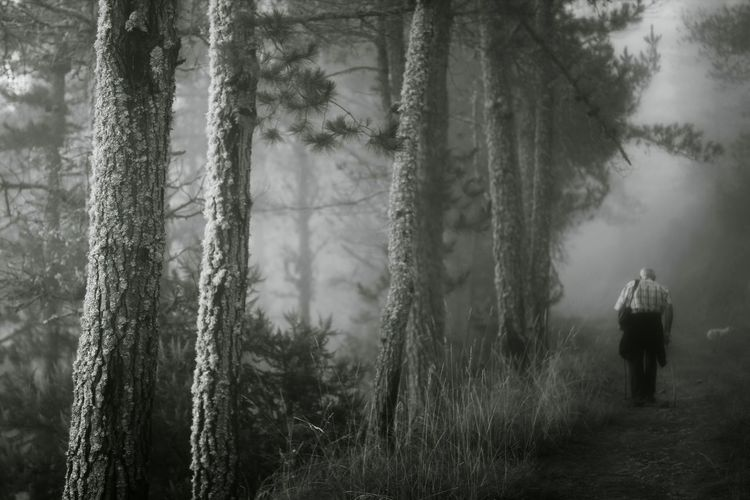 Asturies IbiasFoggy Morning Solitude EyeEm Nature Lover Monochrome Photography The Magic Mission Minimalism Deceptively Simple Monochrome Black And White Bonnejournee!!! Long Goodbye Welcome To Black