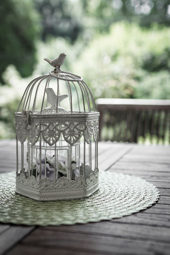 Birdcage on table