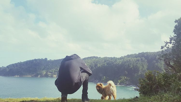 Animal Wildlife Water Mammal Cloud - Sky Nature Lake No People Animal Themes Tree Day Outdoors Moose Sky Doglover Dog Baby Zeus