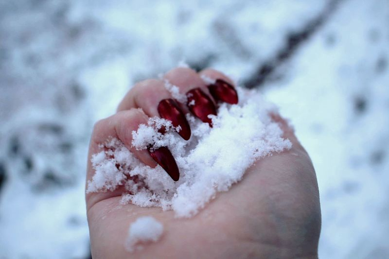 Winter Cold Temperature Human Hand Human Body Part Weather One Person People Freshness Ice Frozen Food Day Close-up Real People Holding Focus On Foreground Outdoors Nature