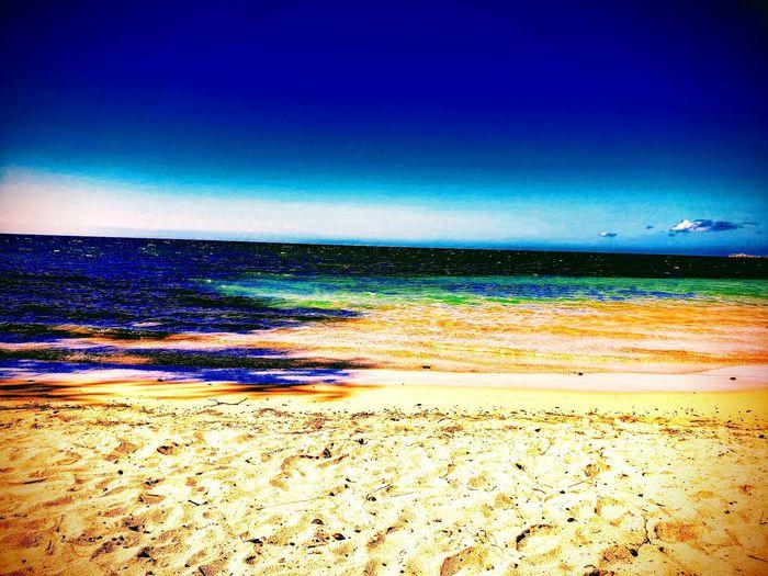 Spencer Beach, big island Hawaiian Travel Hawaiian Home Water Ocean Dand Beach Salt Water Hawai'i Aloha Blue Ocean Water Sea Beach Sand Flamingo Clear Sky Sky Horizon Over Water Landscape
