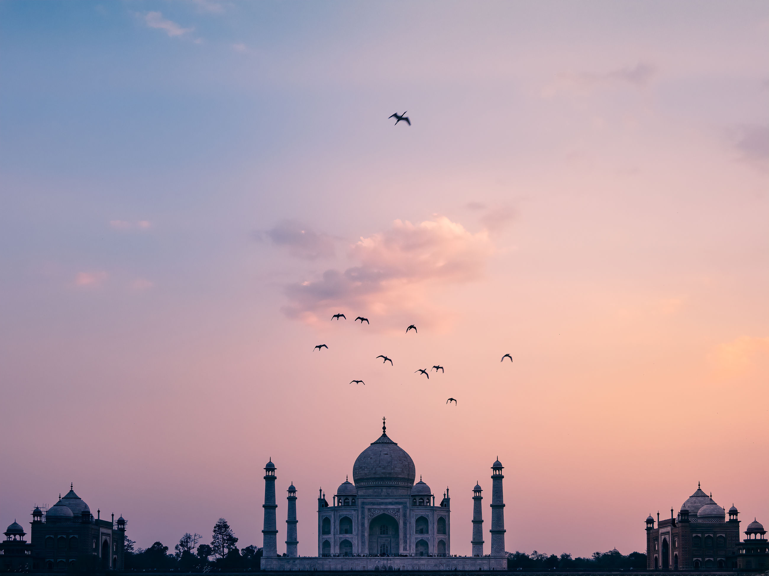 sky, sunset, flying, animal themes, vertebrate, animal, bird, built structure, animal wildlife, animals in the wild, architecture, building exterior, nature, orange color, group of animals, mid-air, cloud - sky, silhouette, large group of animals, travel destinations, no people, flock of birds