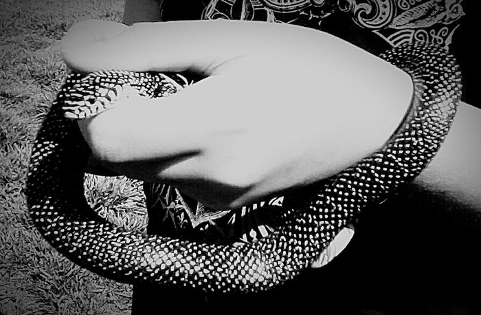 Better Look Twice Wild Creatures Snake Balck And White Blackandwhite Photography Black And White Collection  Animal_collection Details Of Nature From My Point Of View See What I See Salt And Pepper Snake Outdoor Photography ❤ My Son!! Capture And Release I Love All Creatures Great And Small Details Textures And Shapes My World ❤ Pattern Pieces