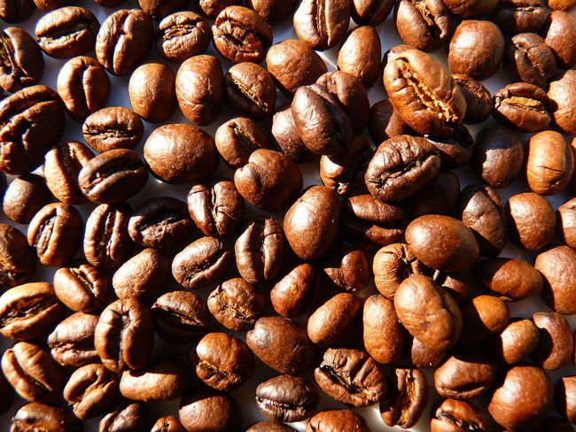 coffee cherry,coffee,Peaberry,caracoli Coffee Abundance Aleq Backgrounds Brown Caffeine Caracoli Close-up Coffee Coffee - Drink Coffee Bean Coffee Cherry Food Food And Drink Freshness Full Frame Healthy Eating High Angle View Indoors  Large Group Of Objects No People Peaberry Roasted Roasted Coffee Bean Still Life Textured