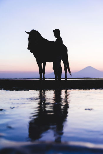 Nature Sky Sunset Mammal Silhouette Domestic Animals Domestic One Animal Water Livestock Vertebrate Standing Nature Men Real People Beauty In Nature Animal Wildlife Herbivorous Horse INDONESIA Colours Of Nature Reflection Man Lombok