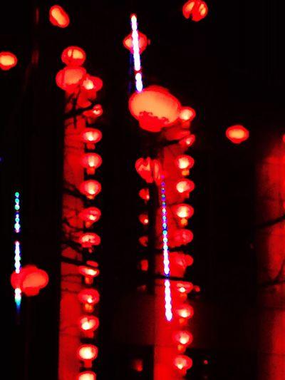 Handmade For You EyeEmNewHere Lighting Equipment Night Lantern Red No People EyeEm Best Shots EyeEm Best Shots - Architecture Chinese Lantern Festival One Person Adapted To The City Enjoying Life Chinese Lantern Taking Photos