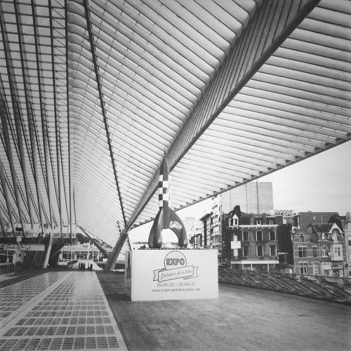 le nouveau Station de Liège, Calatrava