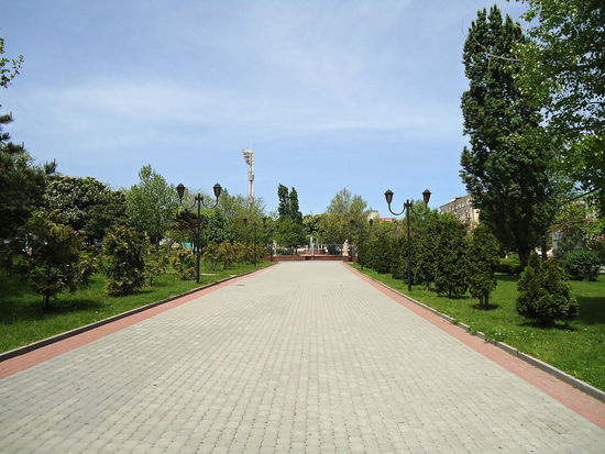 City Day Empty Road Footpath Grass Idyllic Novorossiysk Outdoors Pavement Spacious Spring Street Sunny Day The Way Forward Tranquil Days Tranquil Live Trees Walkpath