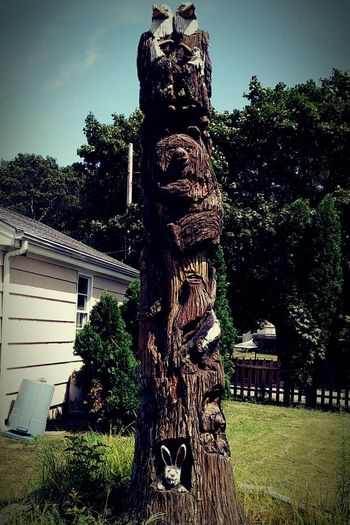 Cool Totem Pole in my Neighborhood EyeEmNewHere Totom Pole Carving In Wood  Rhode Island Instadaily Drivebyphotography Riseandgrind Tree Outdoors Sculpture Nature