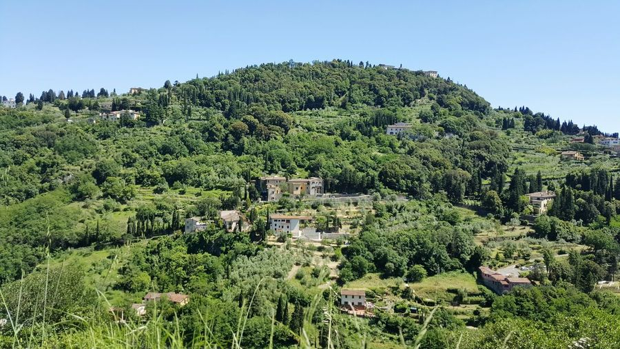 - Hills - Tuscany Hanging Out Hello World Taking Photos Nature Relaxing Enjoying Life Hills Green Paradise