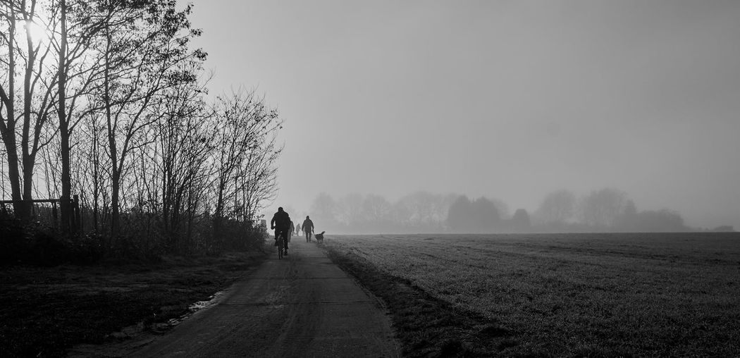 Footpath amidst field during foggy weather
