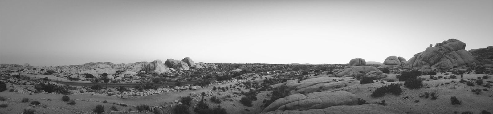 Blackandwhite Panorama Joshua Tree California Dreamin